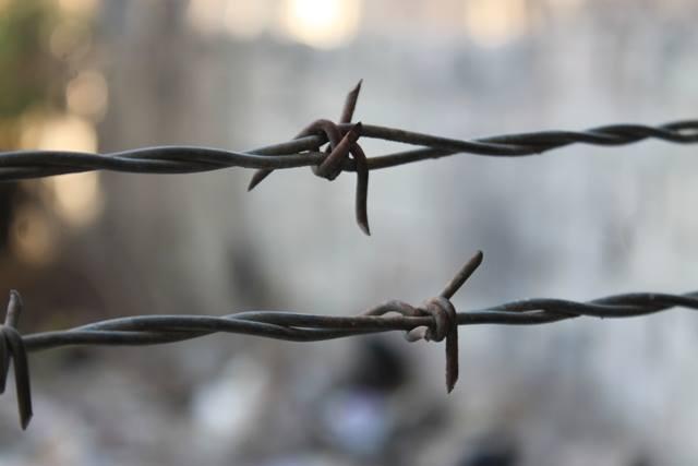 بحضور 350 شخصية عربية وأجنبية يعقد غدا الاربعاء المنتدى العربي الدولي لنصرة اسرى الحرية