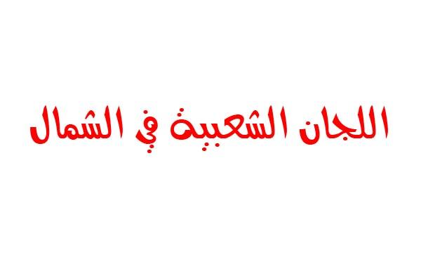 اللجان الشعبية لمنظمة التحرير في الشمال تحمل الأنروا مسؤولية نتائج غضب أبناء المخيمات