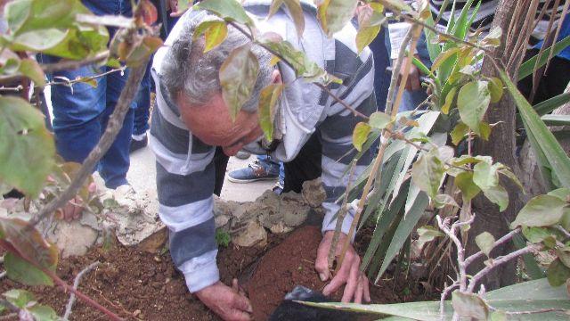 فوج عثمان بن عفان يزرع غرسة زيتون في يوم الارض
