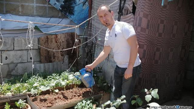 زراعة بيتيّة في مخيّم عين الحلوة