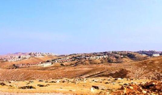 أناكوندا المستعمرات الصهيونية... لا تناسبها ألاعيب الحاوي!  نصار إبراهيم