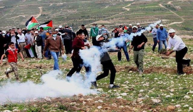 احفظ فلسطين لتكون- طلال سلمان