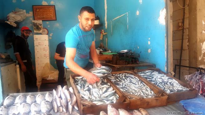 صلاح من عامل بناء إلى بائع سمك في عين الحلوة